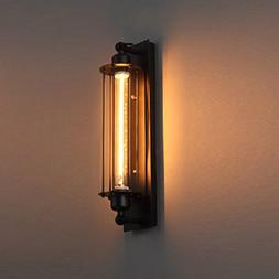Pauwer Industrial Wall Sconce Light Fixture Vintage Wire Cag
